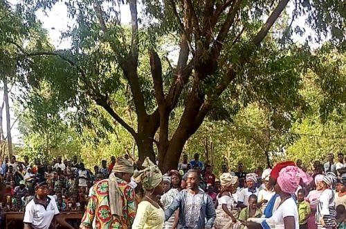 Article : Semaine culturelle 2019: Retour sur les festivités au Lycée de Sotouboua 1