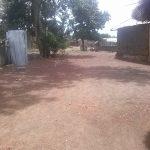 Sotouboua sous la sécheresse: un souci agriculteur