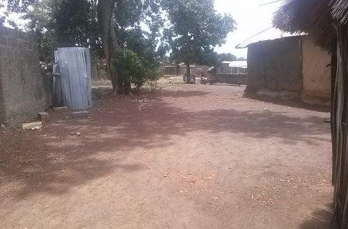Article : Sotouboua sous la sécheresse: un souci agriculteur