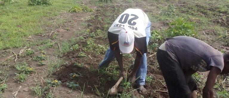Article : Togo : à Sotouboua, la saison agricole peine à décoller